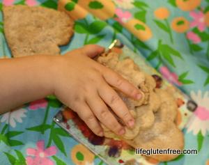 gluten-free spice cookies
