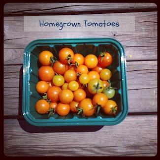 Photo 1tomatoes